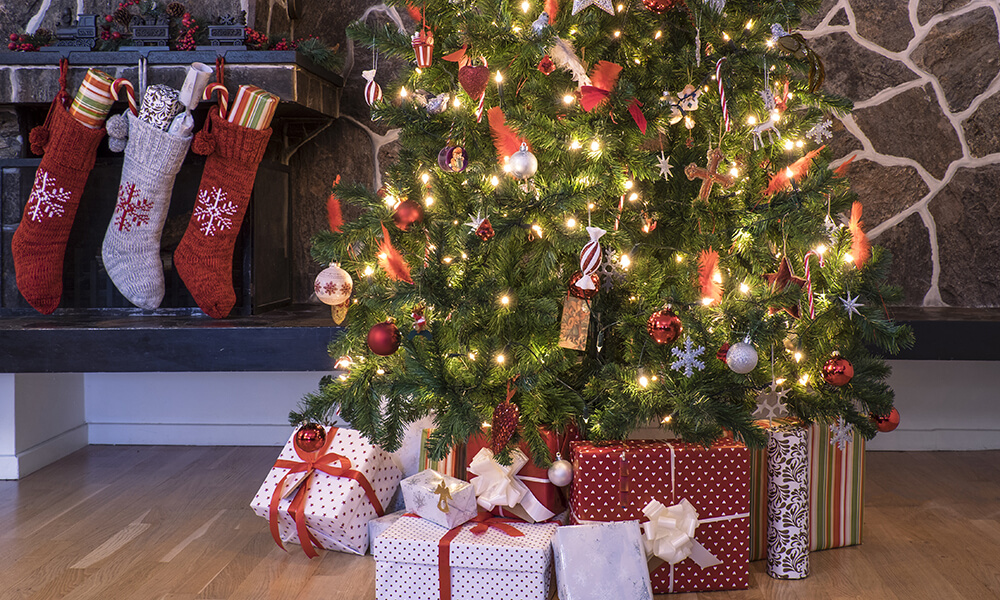 Real Christmas Trees Near Me.Real Facts About Real Christmas Trees